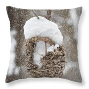 Gone South For The Winter Throw Pillow