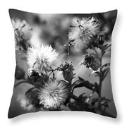 Gone To Seed Wild Aster Throw Pillow
