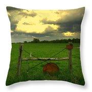Good Fences Throw Pillow