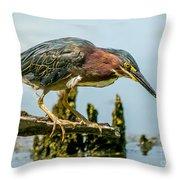 Good Green Fisher Throw Pillow