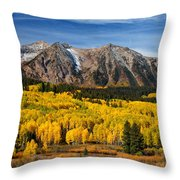 Good Morning Colorado Throw Pillow