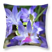 Good Morning My Fairy Throw Pillow