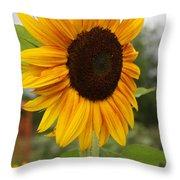 Good Morning Sunshine - Sunflower Throw Pillow