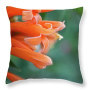 Good Times 2 Throw Pillow