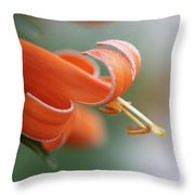 Good Times 3 Throw Pillow