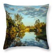 Goodbye Sunny Day Throw Pillow