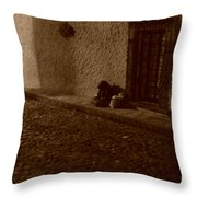 Goodnight Grandmother Sleep Well Throw Pillow