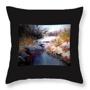 Goose Creek Winter Throw Pillow