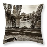 Goose In Central Park Nyc Throw Pillow