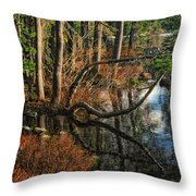 Goose Lake Twilight Throw Pillow