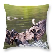 Goose Landing II Throw Pillow