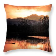 Goose On Golden Ponds 1 Throw Pillow