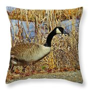 Goose On The Edge Throw Pillow