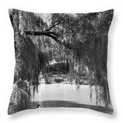 Goose Pond Throw Pillow