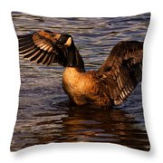 Goose Preparing For Flight Throw Pillow
