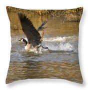 Goose Water Landing Throw Pillow