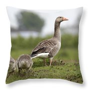 Goose With Chicks Throw Pillow