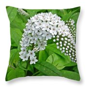 Gooseneck Flower Throw Pillow by Aimee L Maher Photography and Art Visit ALMGallerydotcom