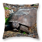 Gopher Turtle Throw Pillow