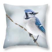 Gorgeous Blue Jay In The Snow Throw Pillow
