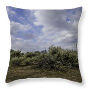 Gorgeous Cloud Cover Throw Pillow