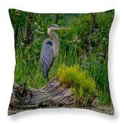 Gorgeous Heron Throw Pillow