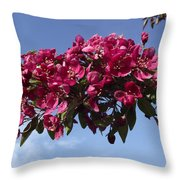 Gorgeous Hot Pink Throw Pillow
