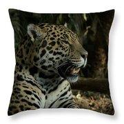 Gorgeous Jaguar Throw Pillow