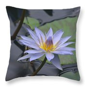 Gorgeous Pale Lavender Water Lily Throw Pillow