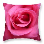 Gorgeous Pink Rose Throw Pillow