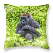 Gorilla Resting Throw Pillow