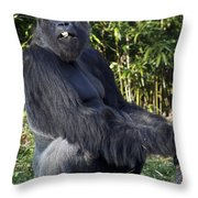Gorillas In The Mist Throw Pillow