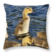 Gosling Showoff Throw Pillow
