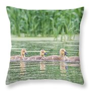 Goslings All In A Row Throw Pillow