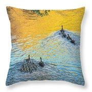 Goslings Morning Swim Throw Pillow