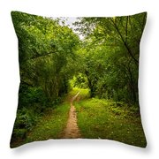 Gosnell Big Woods Trail Throw Pillow