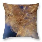 Gossamer Throw Pillow