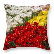 Got Nothing On You Throw Pillow