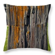 Got Post Throw Pillow