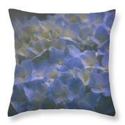 Got The Blues For You Throw Pillow
