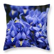 Got The Iris Blues Throw Pillow