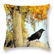 Three Ravens On A Gothic Graveyard Day Throw Pillow