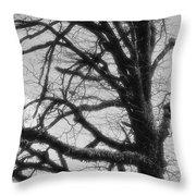 Gothic Oak Throw Pillow