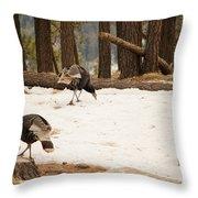 Gould's Wild Turkey Throw Pillow