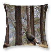 Gould's Wild Turkey IIi Throw Pillow