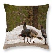 Gould's Wild Turkey Iv Throw Pillow