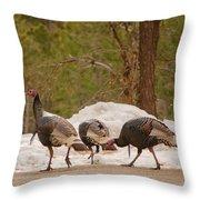Gould's Wild Turkey V Throw Pillow