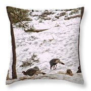 Gould's Wild Turkey Viii Throw Pillow