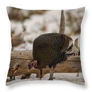 Gould's Wild Turkey Xi Throw Pillow