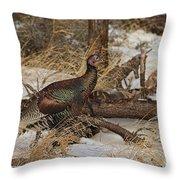 Gould's Wild Turkey Xiii Throw Pillow